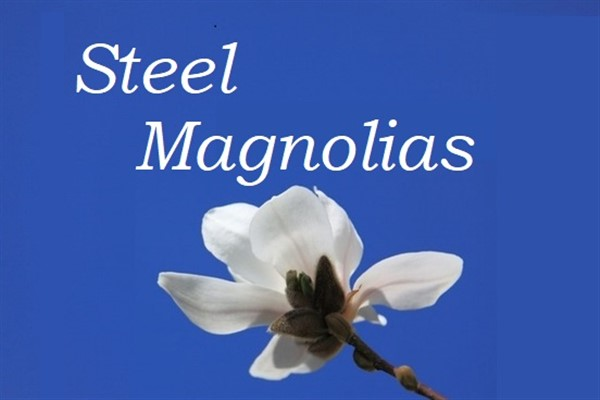 Get Information and buy tickets to Steel Magnolias  on Fort Myers Theatre