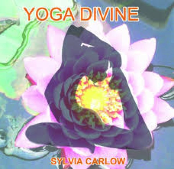 Get Information and buy tickets to Sun Power Yoga Workshop with Sylvia Carlow  on Jimmy's Exclusive Club and Bar
