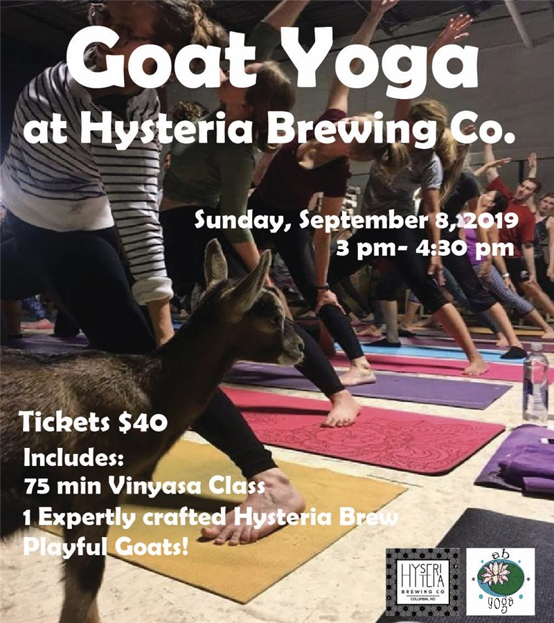 Goat Yoga at Hysteria Brewing