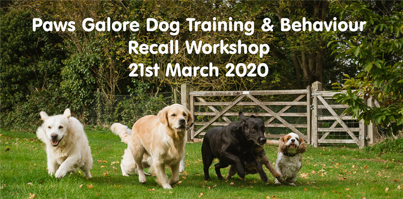Recall Workshop