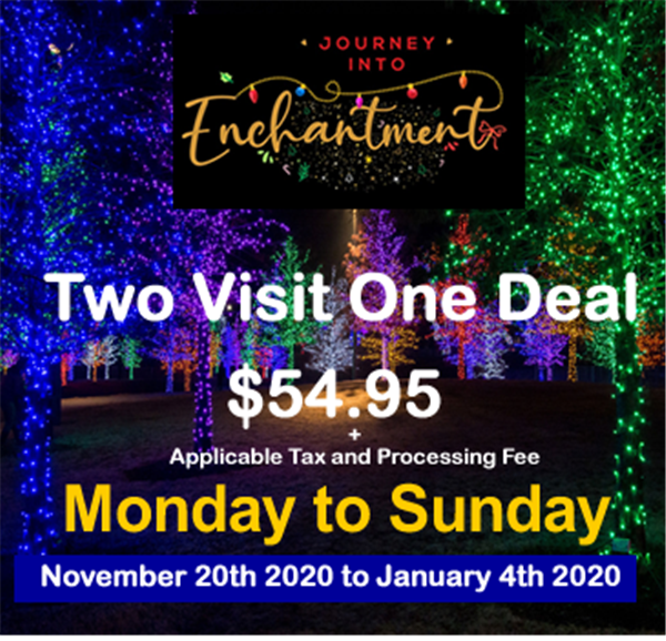 Two Visit One Deal (Mon-Sun)