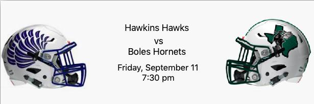 Hawkins Hawks vs Boles Hornets