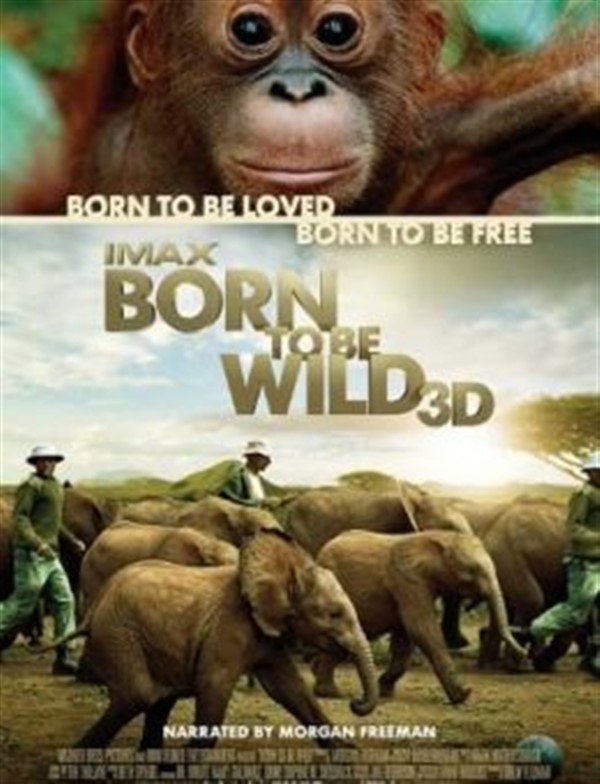IMAX - Born to be Wild 3D