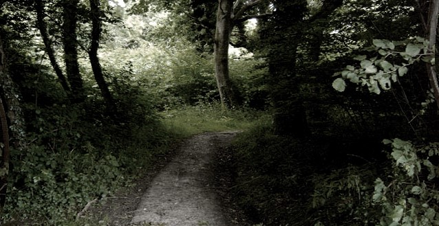 !!HALLOWEEN SPECIAL!! - CLAPHAM WOODS PARANORMAL INVESTIGATION