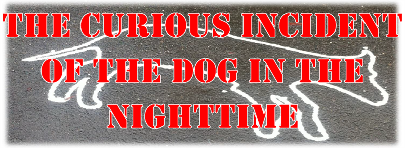 Get Information and buy tickets to SDHS Drama Club Presents The Curious Incident of the Dog in the Nighttime on San Dimas High School