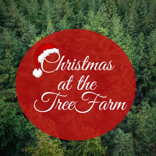 Christmas at the Tree Farm
