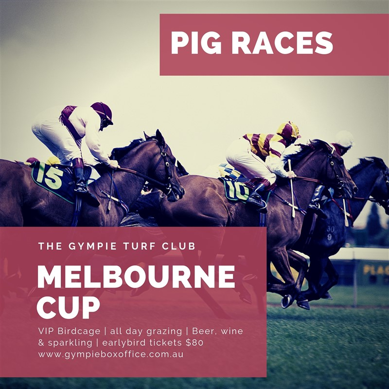 Get Information and buy tickets to Melbourne Cup Day VIP Birdcage. PIG RACES on Gympie Box Office