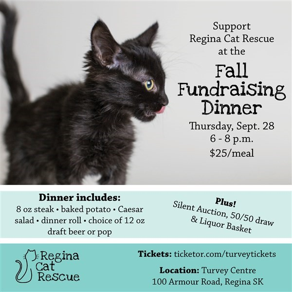 Get Information and buy tickets to Regina Cat Rescue Steak Night  on Turvey Convention Center