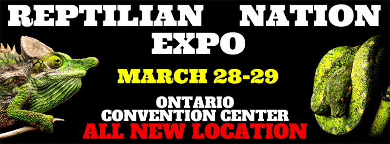 Get Information and buy tickets to REPTILIAN NATION EXPO - INLAND EMPIRE  on Reptilian Nation Expo