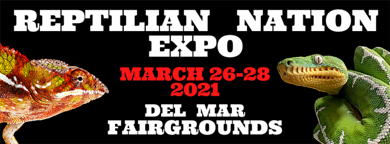 Get Information and buy tickets to REPTILIAN NATION EXPO -SAN DIEGO  on Reptilian Nation Expo