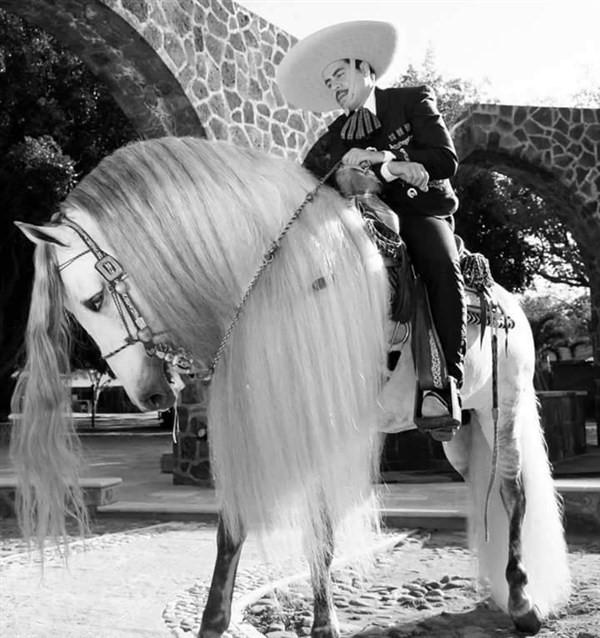 Gran Jaripeo Ranchero  on Sep 05, 12:00@Rowell Ranch - Buy tickets and Get information on farallonpresenta farallonpresenta