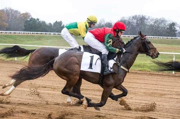 Get Information and buy tickets to Race Night at the Brentham Club In Association with Brentham FC on Brenthamclub.co.uk