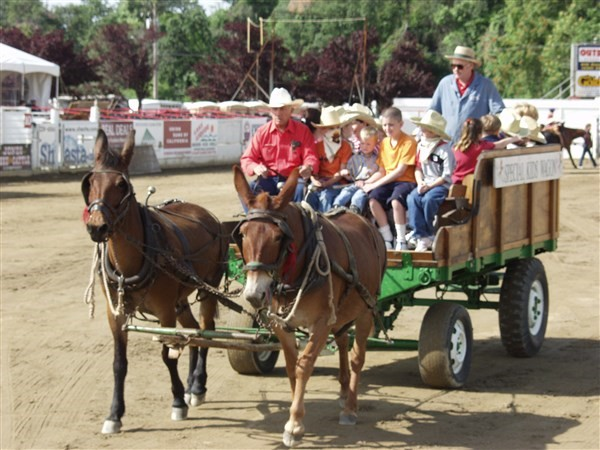 Get Information and buy tickets to 2016 Champions Challenge Saturday Evening Performance on Redding Rodeo Association