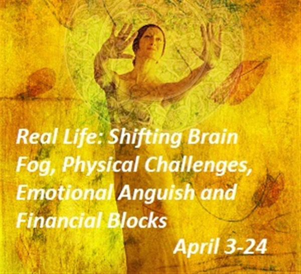 Get Information and buy tickets to Shifting Brain Fog, Physical Challenges, Emotiona  on Leslie Fonteyne